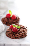 Raw chocolate pasta nests with raspberry Royalty Free Stock Photos