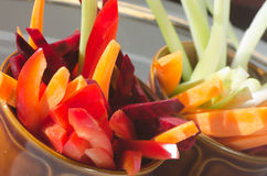 Raw chopped vegetables Stock Images