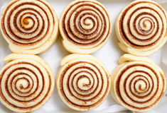 Raw cinnamon buns Stock Photos