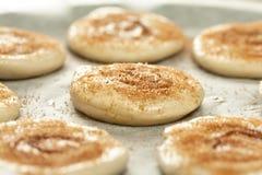 Raw cinnamon rolls. Royalty Free Stock Image