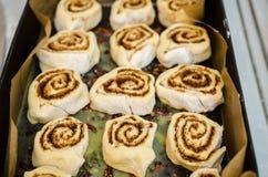 Raw cinnamon rolls in tray Royalty Free Stock Photos
