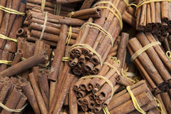 Raw cinnamon sticks in bundles. Horizontal background shot of fragrant cinnamon sticks in bundles at the local herbal market, also known as souks, in Medina stock photo