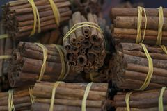 Raw cinnamon sticks in bundles, in a traditional Moroccan market called souk in Marrakesh royalty free stock image