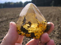 Raw Citrine Crystal Royalty Free Stock Photo
