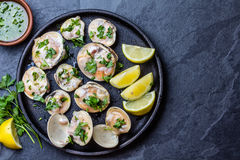 Raw clams with lemon, herbs and white wine, slate background. Fresh raw clams with lemon, herbs and white wine on blackiron plate on stone slate background. Top Royalty Free Stock Images