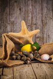 Raw Clams. Seafood - Raw clams with lemon Royalty Free Stock Image