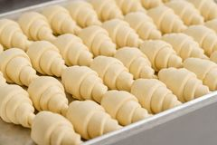 Free Raw Classic Crescent Rolls Stock Photography - 130873712