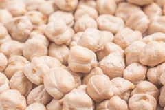 Raw Close-up on a Chickpeas in white background. Cicer arietinum stock photo
