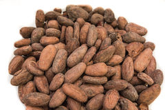 Raw cocoa bean Stock Photos