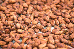 Raw cocoa beans background Royalty Free Stock Photography
