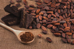 Raw cocoa beans, chocolate, wooden spoon with cocoa powder on sa stock photo