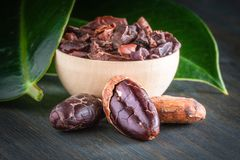 Raw cocoa beans formastero, whole and ground, close-up stock photography