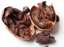 Raw cocoa beans. Studio shot. White background Stock Photography