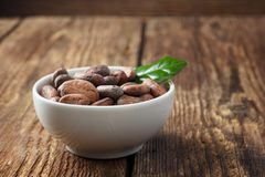 Raw cocoa beans in a white bowl. On a wooden table royalty free stock photos
