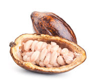 Raw cocoa pod and beans isolated on a white. Background stock image