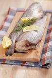 Raw cod Royalty Free Stock Photo