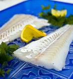 Raw cod fillet. Raw sea food - cod fish fillet with orange slices Royalty Free Stock Photos