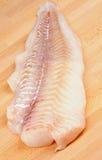 Raw Cod Fish Royalty Free Stock Photo
