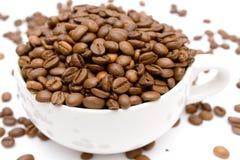 Raw Coffee royalty free stock image