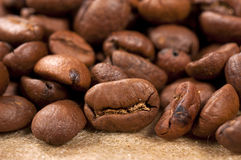 Raw coffee Stock Photos