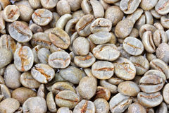 Raw coffee beans Stock Photo