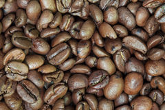Raw coffee beans Royalty Free Stock Photos