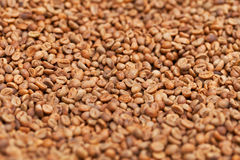 Raw coffee beans close up Royalty Free Stock Photo