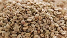 Raw coffee beans closeup. HD 1080 static: raw coffee beans on rotating display - closeup stock video footage