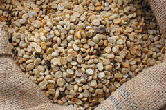 Raw coffee beans in a sack Royalty Free Stock Image