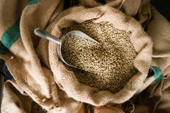 Raw Coffee Beans Seeds Bulk Burlap Sack Production Warehouse Stock Image