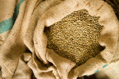 Raw Coffee Seeds Bulk Burlap Bag Agriculture Bean Produce Stock Photography
