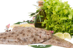 Raw common sole with  spices, lemon and olive oil Stock Photos