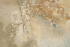 Raw concrete wall background. Stock Photos