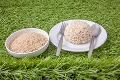 Raw and cooked jasmine brown rice Royalty Free Stock Photos