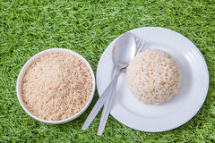 Raw and cooked jasmine brown rice Stock Photography