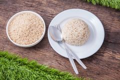 Raw and cooked jasmine brown rice Stock Image