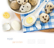 Raw and cooked quail eggs in a plate. Shell, top view close-up on a white background Stock Photos