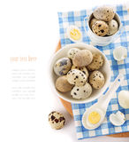 Raw and cooked quail eggs. In a plate, shell, top view close-up on a white background Stock Image