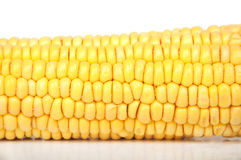 Raw corn Stock Photos