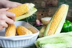 Raw corn on the cob, prepare them for baking, hands. On a green wooden background Stock Photos