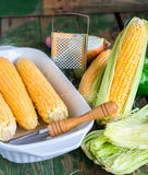 Raw corn on the cob to cook bake,green background. Raw corn on the cob to cook bake on a green wooden background Royalty Free Stock Photo