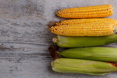 Raw corn cobs. On wooden background Royalty Free Stock Photos