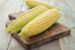 Raw corn cobs. On wooden background closeup Stock Photo