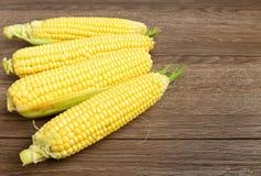 Raw corn, Fresh corn. Fresh raw corn on wooden table Stock Photography