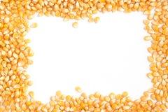 Raw corn grains frame Stock Image