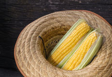 Raw corn. With hat on the wooden floor Stock Images