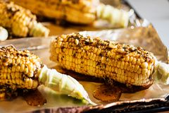 Raw corn with herbs and smoked paprika prepared for baking Royalty Free Stock Photography