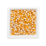 Raw corn kernels Stock Images