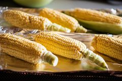 Raw corn prepared for baking Stock Image