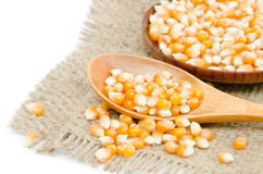 Raw corn seed. And spoon wood on sack background Royalty Free Stock Image